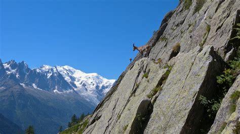 Photos Of by Location Vacances G 238 Te La Ferme De La Tour 224 Servoz En