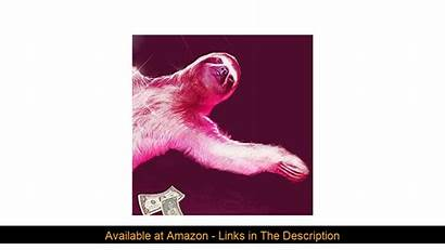 Gag Crazy Gift Sloth Curtain Shower Weird