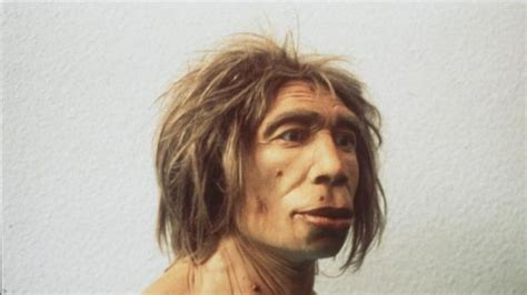 Scientists Sequence Genome Of 45,000-year-old Man