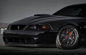 03-04 Mustang Cobra Carbon Fiber Front Bumper Lip - CARBON FIBER