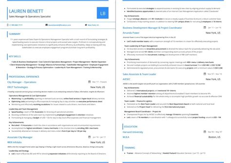 Top Resume Sles by Best Sales Resume Top 10 Best Sales Resume Templates