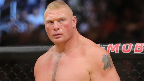 Bodybuilder Nutrition Brock Lesnar Steroids And Workout