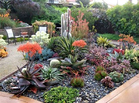 top  amazing succulent front yard landscaping ideas