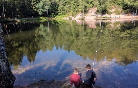 canape covertible séjour en chalet de charme dans les vosges proche du lac