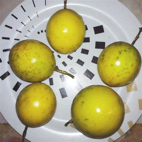 Maracuyá- Passion Fruit | Rancho Nextia