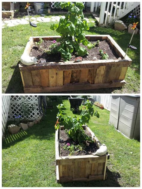 pallet raised planter  pallets