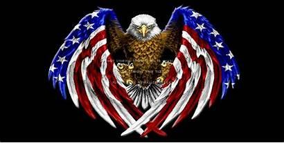 Eagle Flag Freedom Bald American Wings Desktop