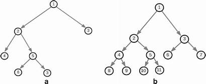 Binary Tree Types Complete Structures Diagram Bozo