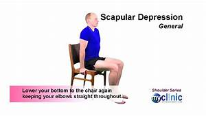 Shoulder Series - Scapular Depression
