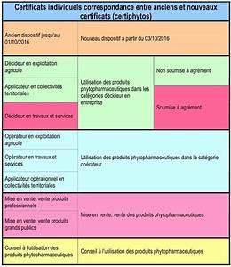 Telecharger Un Certificat De Non Gage : certificat non gage gratuit marubricabrac certificat de cession gratuit les documents avoir ~ Medecine-chirurgie-esthetiques.com Avis de Voitures