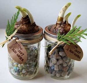 47 best images about Mason Jars Mother s Day on