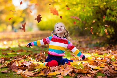 child  fall park kid  autumn leaves stock image