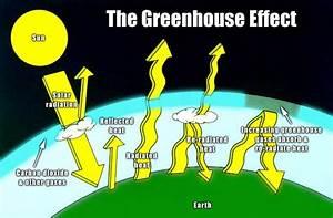 Earth Day Celebrates It U2019s 43rd Year  Go Green  Eat Veg