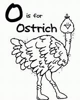 Coloring Ostrich Clipart Popular sketch template