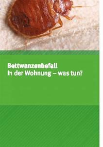 Was Tun Bei Bettwanzen : bettwanzenbefall in der wohnung was tun umweltbundesamt ~ Eleganceandgraceweddings.com Haus und Dekorationen