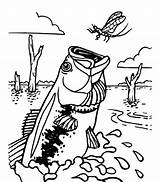 Bass Coloring Fish Pages Fishing Dragonfly Catching Hook Wood Burning Printable Outline Drawings Birthday Channel Glass Stained Getdrawings Getcolorings Clipart sketch template