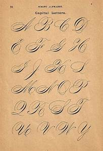 86 best calligraphy alphabets images on pinterest for Calligraphy pen letters
