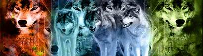 Elemental Wolves Wolf Background Fanpop Forest Club