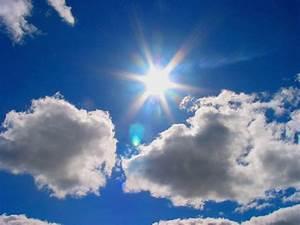 Summer Sunshine | **Mary** | Flickr