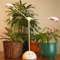 the parameters you would like to consider when growing lights for indoor plants home design