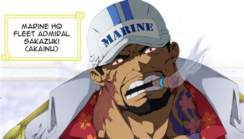 5 Reasons Why Akainu Shouldn't Be Fleet Admiral (one Piece
