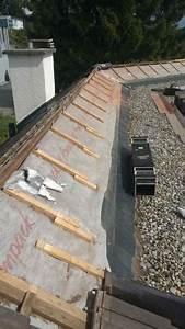 Marder Auf Dachboden : marder vertreiben dachboden marder auf dem dachboden so k ~ Articles-book.com Haus und Dekorationen