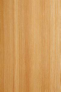 Lärchenholz Eigenschaften, Verwendung und Preise