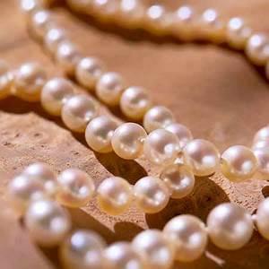 Pearls Photography | www.pixshark.com - Images Galleries ...