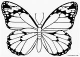 Butterfly Coloring Pages Printable Drawing Cartoon Butterflies Cool2bkids Colouring Monarch Sketches Getcolorings Getdrawings Most Simple Seniors sketch template