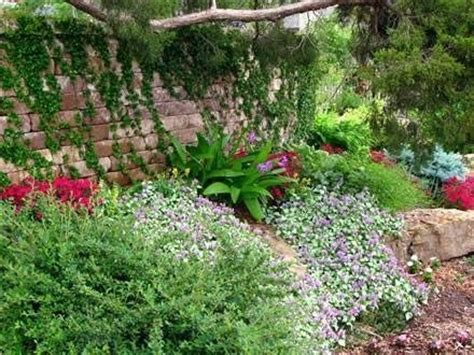 costruire un giardino roccioso come costruire un giardino roccioso 28 images come