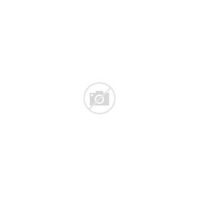 Bohemian Lifestyle Attitude Recordings Roster Label
