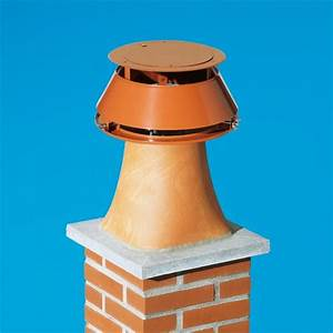 Chapeau Cheminée Brico Depot : aspire fum es statique syst me anti refoulement ~ Dailycaller-alerts.com Idées de Décoration