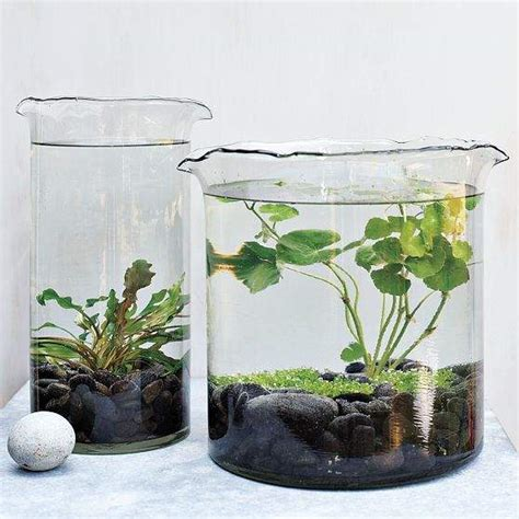 27 Indoor Water Garden Ideas  Small Garden Ideas