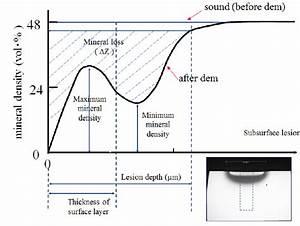 Tmr Profile Of A Subsurface Dentin Lesion  Maximum Mineral