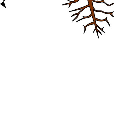 family tree with roots clipart tree roots cliparts co