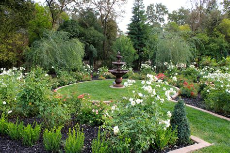 Formal Rose Garden  Michael Glassman & Associates