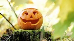 Une Citrouille Pour Halloween : comment d couper et d corer une citrouille halloween 2015 ~ Carolinahurricanesstore.com Idées de Décoration