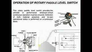 Do You Know The Operation Of Rotary Paddle Level Switch