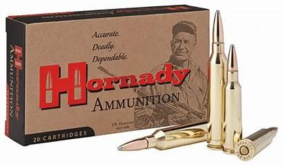 264 Hornady Win Mag Interlock Ammo Magnum