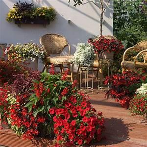 bluhpflanzen fur den balkon in rot With französischer balkon mit ph wert messgerät garten