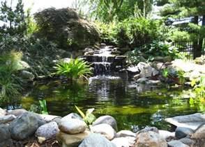cascade pour bassin exterieur cascade bassin de jardin 27 id 233 es cr 233 er votre havre de paix