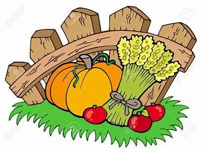 Harvest Clipart Thanksgiving Clip Motive Vegetables Vector
