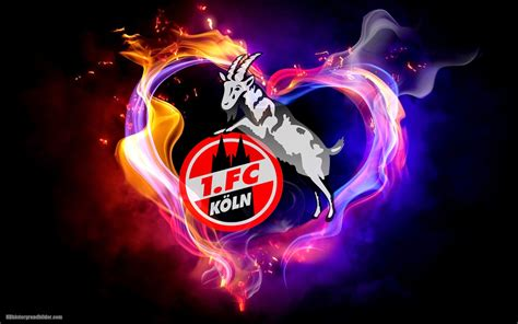 Maybe you would like to learn more about one of these? Logo 1. FC Köln hintergrunde   HD Hintergrundbilder