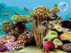 Free Screensavers 3D Tropical Aquarium Fish