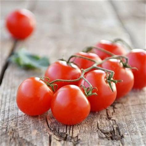 recettes avec tomate cerise toutes les recettes tomate
