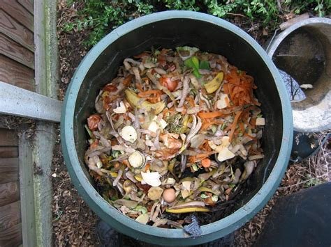 compost cuisine easy tips for a healthy compost pile homegrown