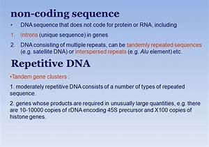 From Genes to Genomes Jinsong Pang - ppt video online download