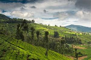 13 cool and calm honeymoon destinations in india in may for Honeymoon packages for ooty