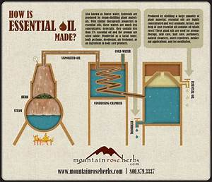 How Is Essential Oil Made