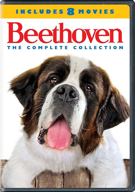 beethoven complete st bernard dog  series
